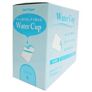 ウォーターカップ 90ml 250枚入 【2セット】