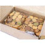 ニュー 10種の豆乳おからクッキー 500g×2袋