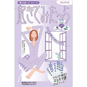 起きてみたーら ミニパック 8包入 【2セット】