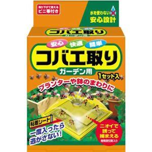 コバエ取り ガーデン用  1セット入 【8セット】