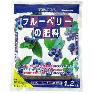花ごころ ブルーベリーの肥料 1.2kg 【3セット】