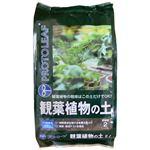 プロトリーフ 観葉植物の土 2L 【6セット】