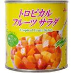 ロイヤルタイプレミアム トロピカルフルーツサラダ 【19セット】