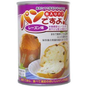パンですよ! レーズン味 2個入 【8セット】
