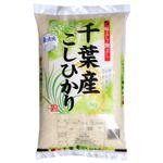 【無洗米】千葉県産コシヒカリ 5kg 【3セット】