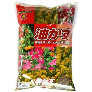 SUNBELLEX 油粕 1kg 【8セット】