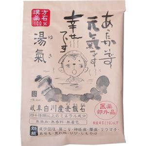 湯氣(ゆき) 15g 【7セット】