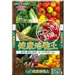 SUNBELLEX たっぷり野菜 健康培養土 25L 【2セット】