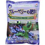 朝日工業 ブルーベリーの肥料 550g 【7セット】