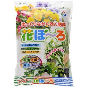 朝日工業 ゆっくりながく効く肥料 花ぼーろ 2kg 【3セット】