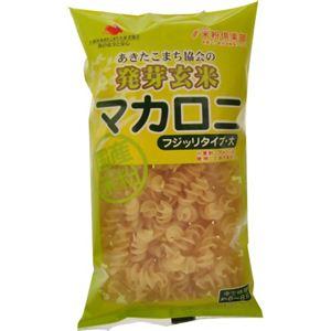 発芽玄米 マカロニ フジッリタイプ 大 150g 【30セット】