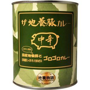 【数量限定】 ザ 地養豚カレー 中辛 840g 【4セット】
