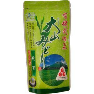 有機栽培茶 大山みどり 煎茶ティーパック 3.5g*12P 【4セット】