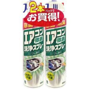 エアコン徹底洗浄スプレーハーブの香り 420ml*2 【6セット】