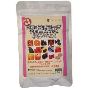 トロピカルフルーツ14種ミックス粒 120粒 【2セット】