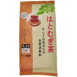 はとむぎ茶 ティーバッグ 20袋入 【5セット】