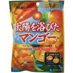 太陽を浴びたマンゴー 85g 【13セット】
