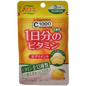 C1000 1日分のビタミンサプリメント 3日分 15粒入 【9セット】