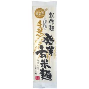 手延べ発芽玄米麺 150g 【9セット】