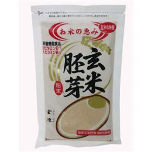 (まとめ買い)玄源 玄米胚芽×4セット