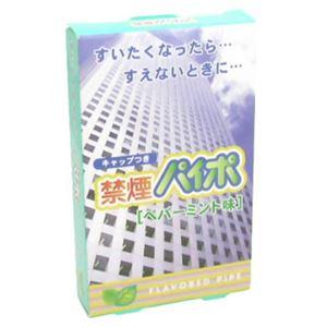 (まとめ買い)禁煙パイポ ペパーミント味×8セット