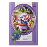 ユーワ 瞳においしいブルーベリー茶 30包【3セット】