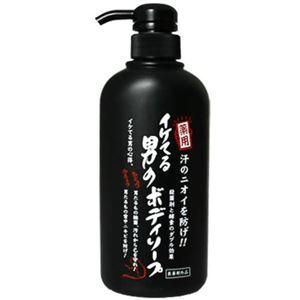 イケてる男のボディソープ 500ml 【2セット】