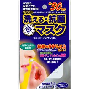(まとめ買い)洗える抗菌鼻マスク 花粉対策 レギュラーサイズ 3個入 ケース付×6セット