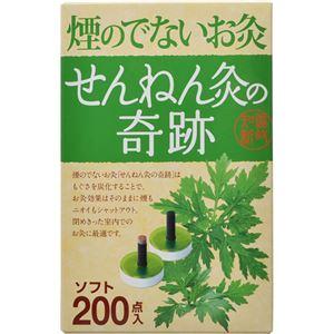 (まとめ買い)せんねん灸の奇跡 煙の出ないお灸 ソフト 200点入×2セット