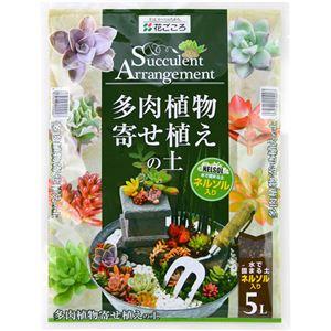 (まとめ買い)花ごころ 多肉植物寄せ植えの土 5L×4セット