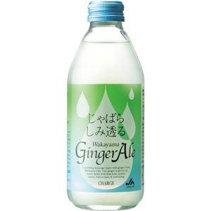 (まとめ買い)じゃばらしみ透る Wakayama GingerAle 250ml×12セット