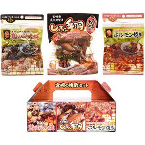 (まとめ買い)日向屋 宮崎の晩酌セット 3袋入×6セット