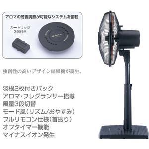 アピックス リビング扇風機 Fan!Tastic ブラック