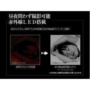 赤外線暗視ネットワークカメラ IP MIRUMIRU