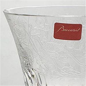 Baccarat (バカラ) パルメ (S)ワイン 1516104