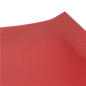 Alessi (アレッシ)  FM05/55 R レクタングラートレイ RED