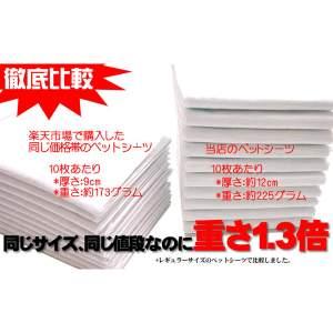業務用ペットシーツ レギュラー 600枚入 RS-600