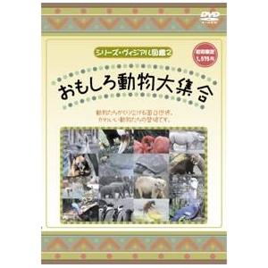 KIDSいろんな動物DVD4本セット+オマケ付!