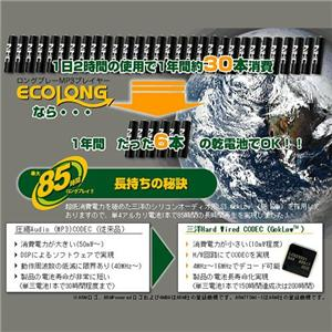 NHC MP3プレーヤー ECOLONG 1GB LP-10 迷彩