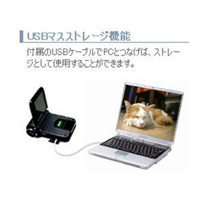 GREENHOUSE SDカード対応デジタルビデオカメラ GHV-DV24SD シルバー