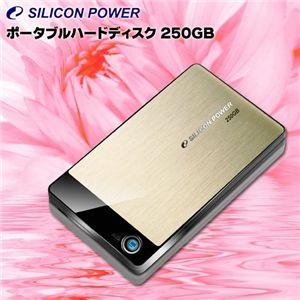 SiliconPower(シリコンパワー) ポータブルハードディスク 250GB SP250GBPHDA50S2G