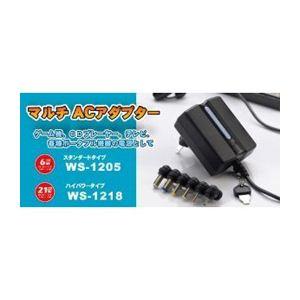 日本トラストテクノロジー マルチACアダプター21W WS-1218