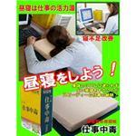 辞書型お昼寝枕☆ 仕事中毒