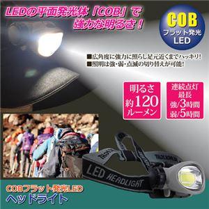 (まとめ)福昌 COBフラット発光LEDヘッドライト 810841【×3セット】