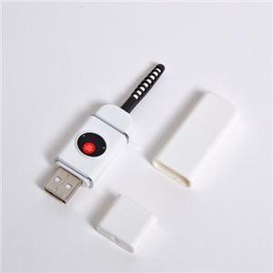 (まとめ)サンコー 目もとパッチリ!USB充電式まつげカーラー USBEYEL8【×2セット】