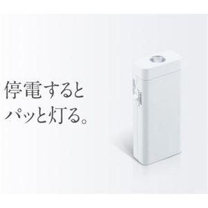 (まとめ)ツインバード 停電センサーLEDサーチライト ホワイト LS-8557W【×2セット】