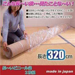 (まとめ) アーランド 長〜いビニール袋 2枚組 807819 【×5セット】
