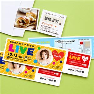 (まとめ) サンワサプライ インクジェット用フリーカード(チケット) JP-FR1N 【×10セット】