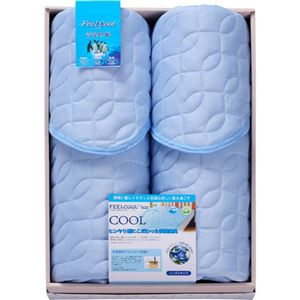 ROSANNA FEEL COOL 冷感 敷きパット2P(フィールクール) L2077040