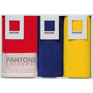 (まとめ) パントン ブライト パントン ウォッシュタオル3P C8099020 【×3セット】
